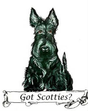 gotscotties2.jpg