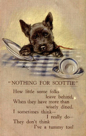 old_scottie_picture.jpg